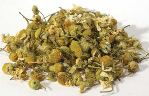 1 Lb Chamomile Flower (egyptian)