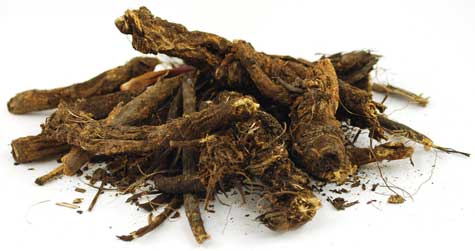 1 Lb Golden Seal Root cut